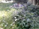 Поход от памятника экипажу разбившегося самолёта ил76 в 2001 году  (часть 2)